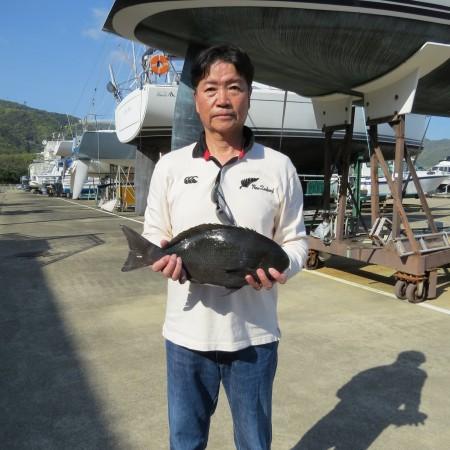 H31.4.18 1.68kg クロ (4)
