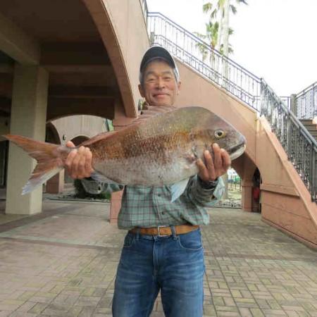 R1.5.4,4.95kg (1)